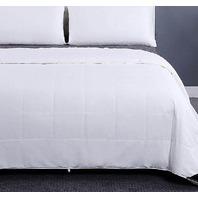 LiliySlik Washable Cotton Covered Silk Duvet, King