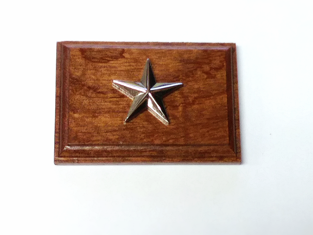 USN USCG Rear Admiral RDML One Star 07 Coat Device Rank Insignia Mounted On Wood