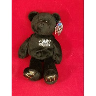 Limited Treasures Charles Woodson #24 Black Beanie Plush Bear 13234 Raiders
