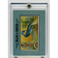 2021 Topps Allen & Ginter Framed Originals Louisiana Heron Game Birds 1/1 RARE
