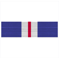 Vanguard RIBBON UNIT #3600: AFJROTC CADET HUMANITARIAN AWARD