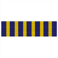 Vanguard RIBBON UNIT #3613 NATIONAL SOJOURNERS AWARD