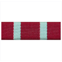 Vanguard RIBBON UNIT #3719
