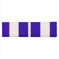 Vanguard RIBBON UNIT #5194: YOUNG MARINE FIRST SERGEANT