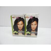 Naturigin Permanent Hair Color Dye, Black 2.0 (2 Count) BOX DAMAGE