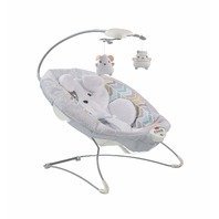 Fisher-Price GGD46 Deluxe Bouncer: Sweet Dreams Snugapuppy BOX DAMAGE
