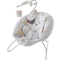 Fisher-Price GGD46 Sweet Snugapuppy Dreams Deluxe Bouncer NO ORIG BOX