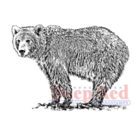 Deep Red Rubber Cling Stamp Wild and Fierce Grizzley Bear