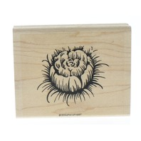Stampin Up 2 part Cabbage Rose Garden Flower Wooden Rubber Stamp