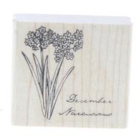 December Narcissus Flower Plant Narcissis Garden Botanical Wooden Rubber Stamp