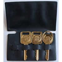 Vintage NOS GM OEM GOLD CADILLAC IGNITION KEYS Yellow Gold Color C and D Keys