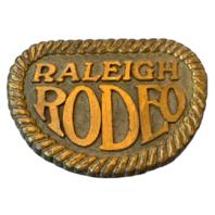 Brass Belt Buckle Metal Raleigh Lights Rodeo