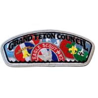 Cedar Badge Eagle Scout BSA Boy Scout Merit Badge Uniform Patch