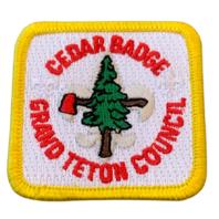 Cedar Badge Grand Teton Council BSA Boy Scout Badge Uniform Patch