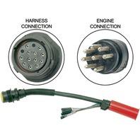 HARNESS ADAPTER NON DTS 14 PIN TO 8 PIN-Non DTS 14 Pin to 8 Pin, 1'