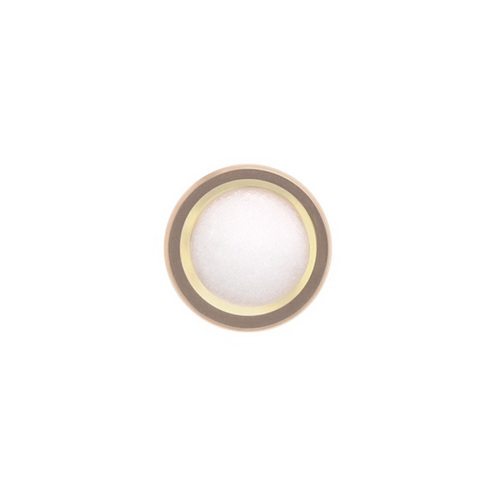 PEARL FOR BEZEL INSERT PIP FOR OMEGA SEAMASTER PROFESSIONAL 2000 973.06 GOLD
