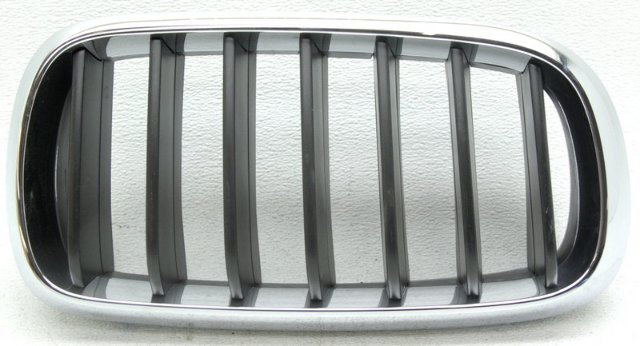 OEM BMW X5 Right Passenger Side Grille Tab Missing 51137294486