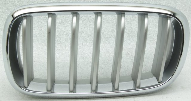 OEM BMW X5 Left Driver Side Grille Scratches 51117303109