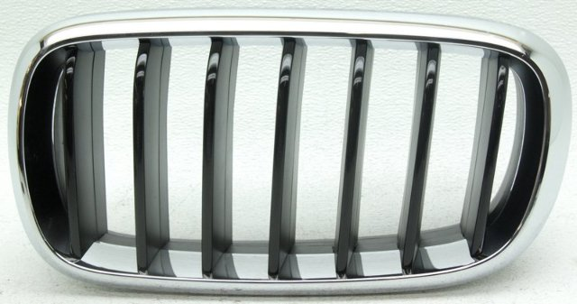 OEM BMW X6 Left Driver Side Grille Scratches 51137373689