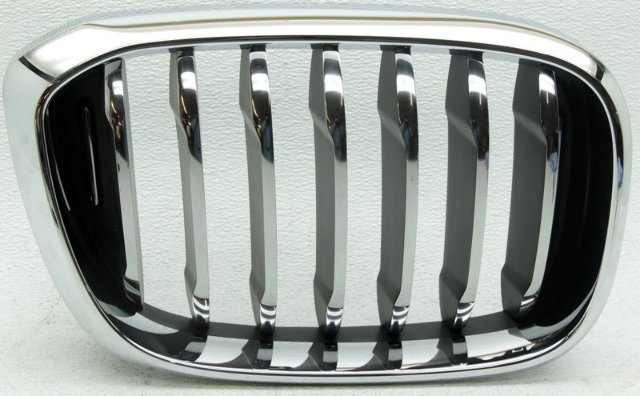OEM BMW X3 Right Grille Scratches 51137464920-06