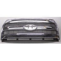 OEM Ford F150 Lariat Grille Scratches FL3Z-8200-HA