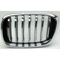 OEM BMW X3 Left Grille Scratches 51137464919-06