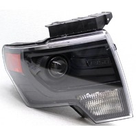 OEM Ford F150 FX2, F150 FX4 Right Passenger Side HID Headlamp Peg Missing
