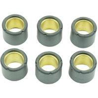 Scooter Roller Kit 19mm x 15.5mm 7.6 Grams (6-Pack) - Athena S41000030P039