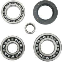 Kawasaki Bayou 300 400 4x4 89-04 Rear Wheel Differential Bearing & Seal Kit
