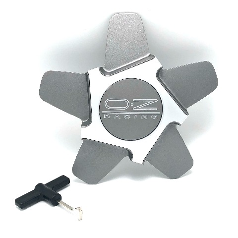 OZ Racing Quaranta 5 Wheel Center Hub Cap M655 Silver Gray w/ Removal Tool M655