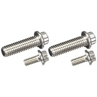 ARP 430-1601 Stainless 300 12-Point Fuel Pump Bolt Kit