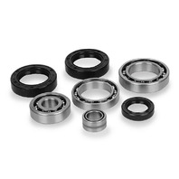 Quad Boss Differential Bearing and Seal Kits Rear 25-2011