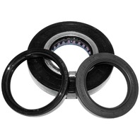 Quad Boss Differential Bearing and Seal Kits Rear 25-2086