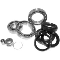Quad Boss Differential Bearing and Seal Kits Rear 25-2087