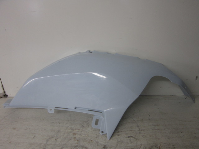 Kawasaki UTV Side By Side 2020 Teryx KRX 1000 OEM White RH Fender 35038-0015-66F